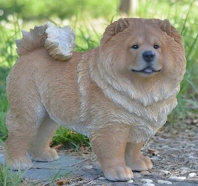 Dog - Chow Chow Standing Statue