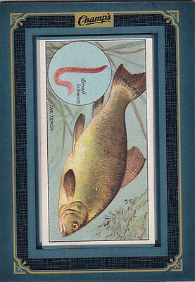 2015-16 Upper Deck Champs The Tench Fish & Bait Framed Tobacco Cards #19 15-16