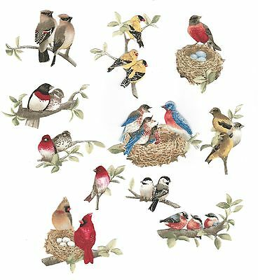 11 Patch tissu thermocollant Oiseaux Iron-on patch Birds