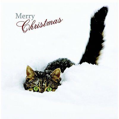 Weihnachtskarte - Peepo Cat - Merry Christmas