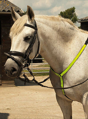 Reflective Martingale For Horse, Be Seen Be Safe, Winter Riding