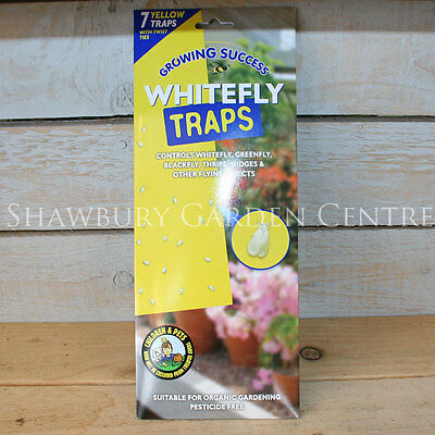 Growing Success Whitefly Traps Pack of 7
