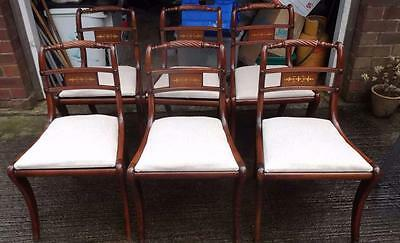 Regency reproduction chairs