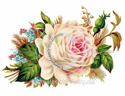 Vintage Image Victorian Shabby Large Cabbage Rose Waterslide Decals FL313