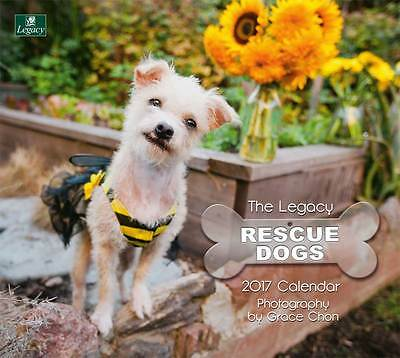 2017 Lang / LEGACY Calendar RESCUE DOGS New Wall Calender Fits Wall Frame FRE...
