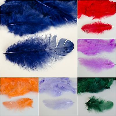 Fluffy Feathers pack of 25 Art Crafts Scrapbooking Card Making Decoration