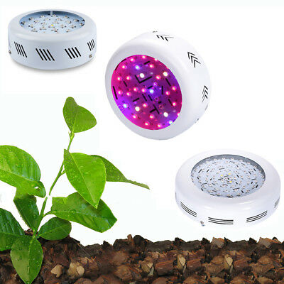 150W 200W 300W 700W LED Grow Light Kits Lamp for Plants Growing Full Spectrum