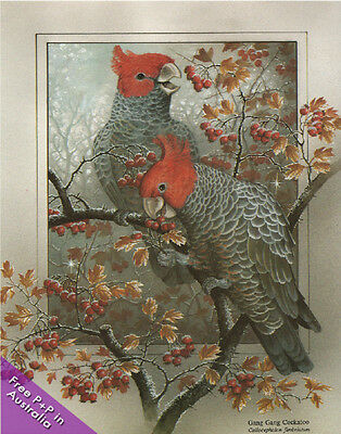 NEW Gang Gang Cockatoos   by Shirley Barber : Paper Tole Kit