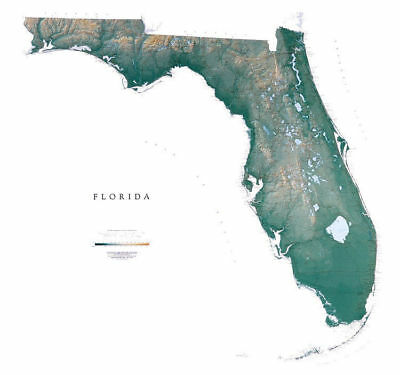 """Florida Topographic Wall Map by Raven Maps, 44""""x 48"""""""