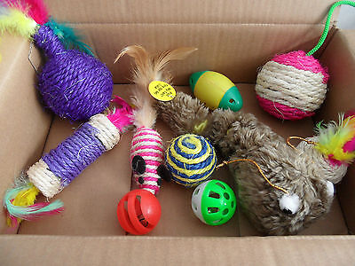 Cat Kitten Selection Box Contains 12 Toys Sisal, Mouse, Ball, Vibrating (No. 1)