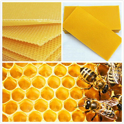 30Pcs Honeycomb Foundation Beehive Wax Frames Waxing Beekeeping Equipment Bee Hi