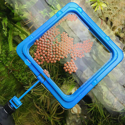 Aquarium Fish Tank Food Feeder Feeding Ring
