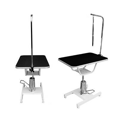 Pisces Professional Hydraulic Dog Grooming Parlour Table With Arm And Pet Leash