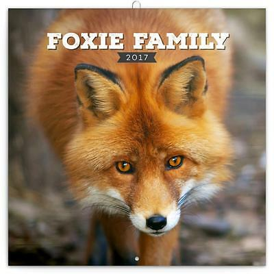 Foxes 2017 Uk Square Wall Calendar New And Sealed