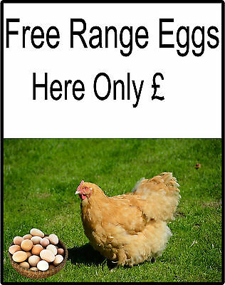 Free Range Eggs For Sale Sign - Personalise your own Price, Eggs Sold Here Signs