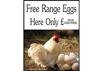 Free Range Eggs For Sale Here Sign - Add your own Price, Eggs Sold Here Signs