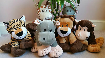 Reiki Jungle Animals