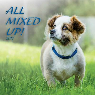 2017 Calendar Turner 12×12 inch ALL MIXED UP DOGS New Wall Calender FREEPOST New