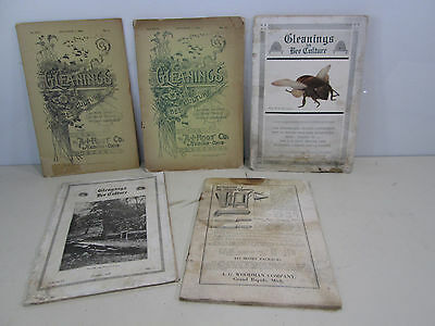 1898 -1918 Gleanings in Bee Culture by A.I. Root Co. Medina Ohio