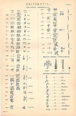1868 Print ~ Arithmetic ~ Chinese Numerals Muyscan And Mexican Hieroglyphics