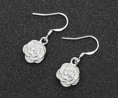 Wholesale 925 Silver Plated fashion jewelry solid silver women earring gift #2