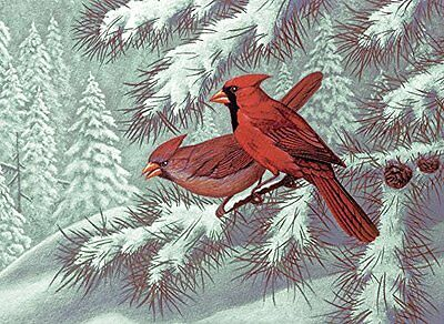 Royal & Langnickel 11 x 15 inch Cardinals Pre-Printed Paint by Number Painting