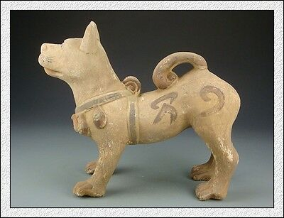 Ancient Chinese Rare Eximious Collectable Han Dynasty Color Pottery Dog