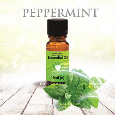 Peppermint Essential Oil 10ml - 100% Pure - For Aromatherapy & Home Fragrance