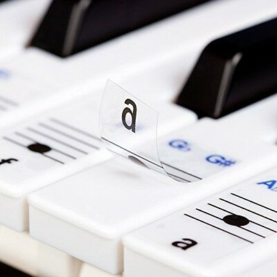 Keysies Transparent Plastic Removable Piano And Keyboard Note Stickers - Plus