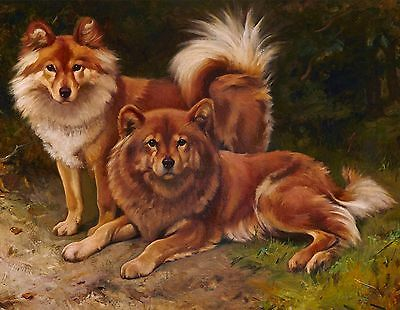 Finnish Spitz Duo Dog Puppy Dogs Puppies Vintage Art Poster Print
