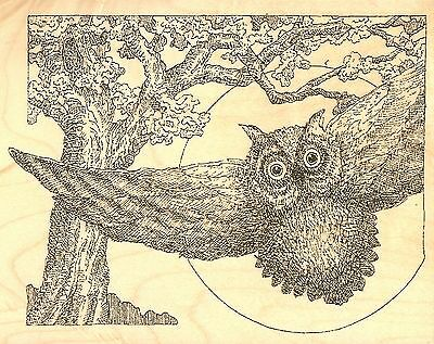NEW Owl Twiggy Moon Wood Mounted Rubber Stamp IMPRESSION OBSESSION F2407