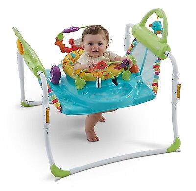 Fisher-Price First Steps Jumperoo , Free Shipping