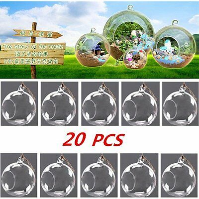 LOT 20PCS Hanging Glass Flowers Plant Vase Stand Holder Terrarium Container LO