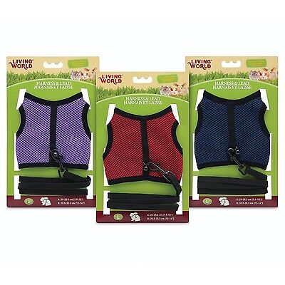 Living World 60867 Large Harness and Lead Set Assorted Colors New