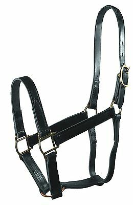 Hamilton 1-Inch Leather Quality Halter Average Size Fits 800 to 1100-Poun... New