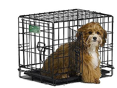 Midwest Home For Pets 1518DD Icrate Fold and Carry 18-Inch Double Door Cr... New
