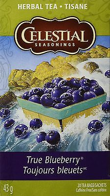 Celestial Seasonings Herb Tea True Blueberry 20-count (Pack of 6) New