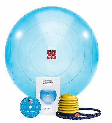 Bosu 18250-1 Ballast Ball New