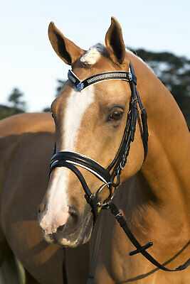 New Black Leather English Bridle Bling V White Padded with Reins and Flash