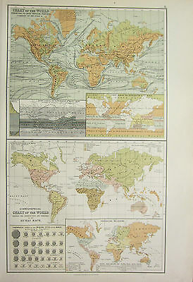 1890 Large Antique Victorian Print ~ Chart Of The World Ethnographical Currents