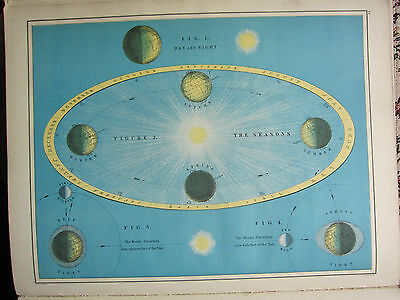 1892 LARGE ASTRONOMY PRINT ~ COMETS GREAT HALLEY ENCKE'S etc SEASONS ~ 2 SIDES