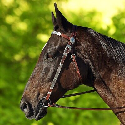 New Brown Leather Western Show Bridle With Split Reins Pony Cob Full Size