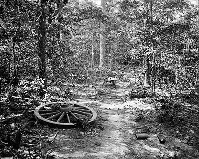 New 11x14 Civil War Photo: Woods where Gen. James McPherson Fell, Atlanta - 1864
