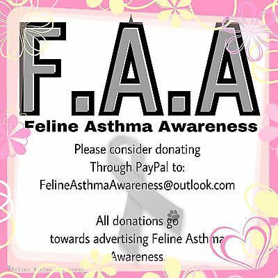 Donation To Feline Asthma Awareness Cat Cat Asthma Donate