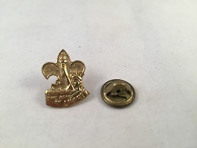 Boy Scouts - Strengthen the Arm of Liberty Lapel Pin - Robbins Company