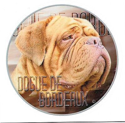 Aufkleber Motiv 2 Dogue de Bordeaux Dogge Bordo Dogge Dog Autoaufkleber Sticker