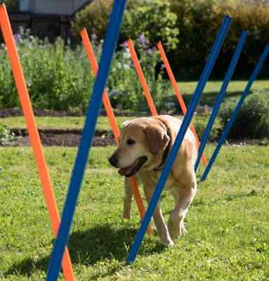 Dog Agility Weave Poles Fit Healthy Pet Sport Fun Training Exercise Activity Set