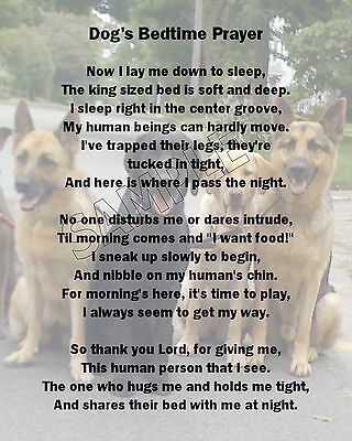 Dog's Bedtime Prayer Poem Image Print