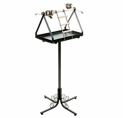 Large Parrot Play Stand Free Standing Perch Classic Style Black Iron Dirt Tray
