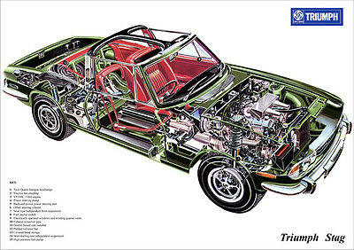 Triumph Stag Cutaway Image A3 Size Poster Print